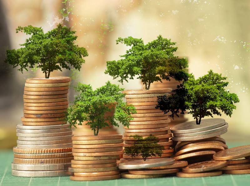 Money growth Saving money. Upper tree coins to show concept of growing business.  stock images