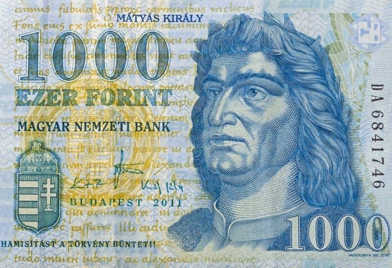 Money of Hungary 1000 forint macro royalty free stock photo