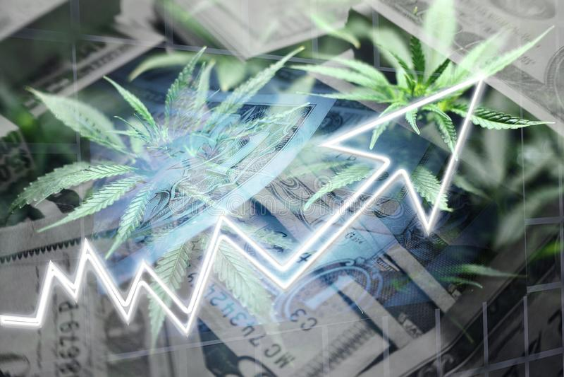 Money With Marijuana Leaves Representing Cannabis Penny Stocks stock illustration