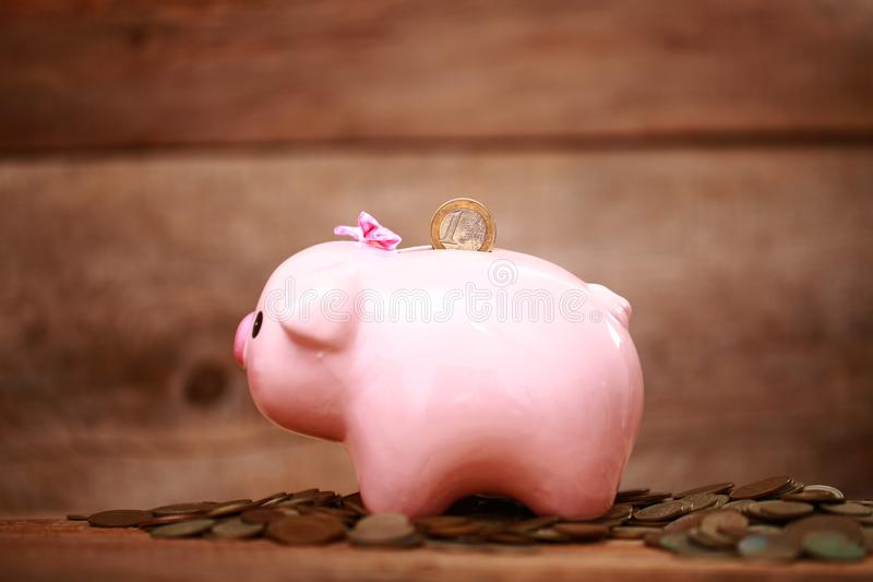 Money pink piggy bank coin putting hand save. Money piggy bank coin putting hand save royalty free stock images