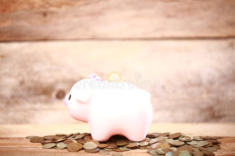Money pink piggy bank coin putting hand save. Money piggy bank coin putting hand save royalty free stock photography