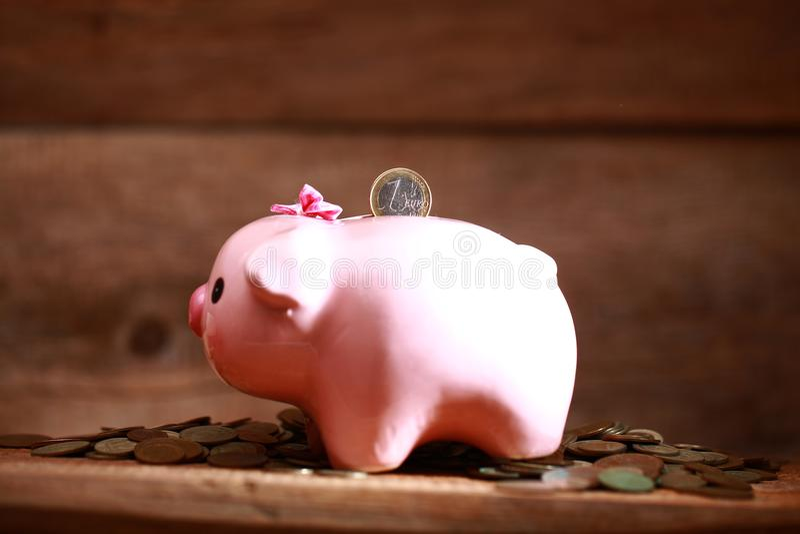 Money pink piggy bank coin putting hand save. Money piggy bank coin putting hand save stock photo
