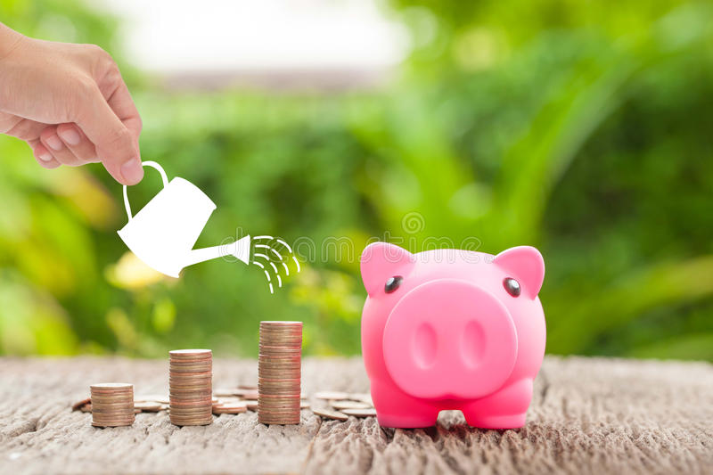 Money and piggy bank with woman hand hold watering can, Growth stock photography