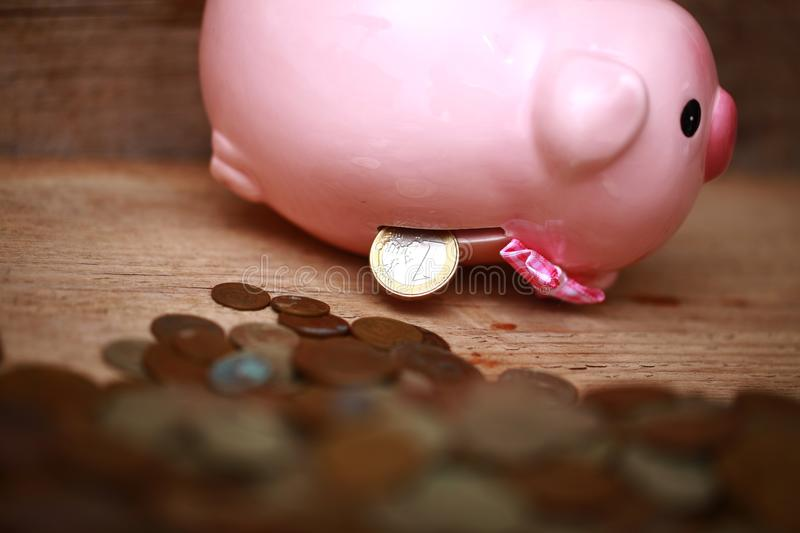 Money pink piggy bank coin putting hand save. Money piggy bank coin putting hand save royalty free stock image