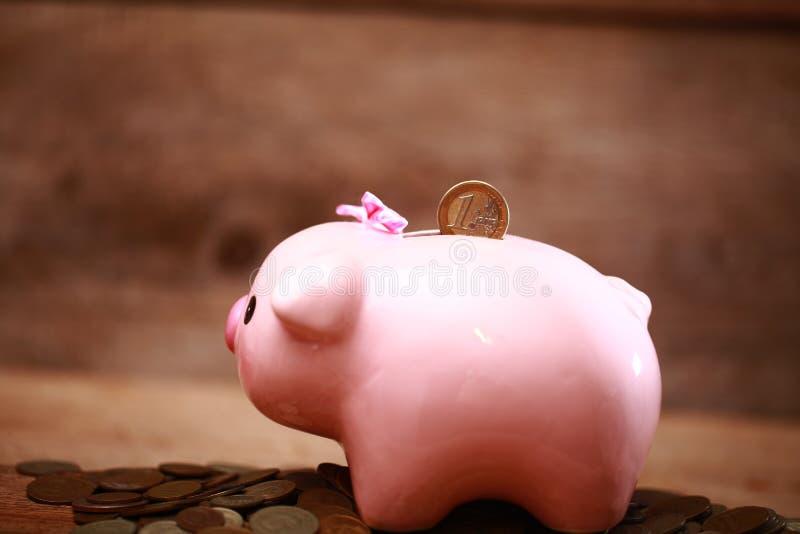 Money pink piggy bank coin putting hand save. Money piggy bank coin putting hand save stock images