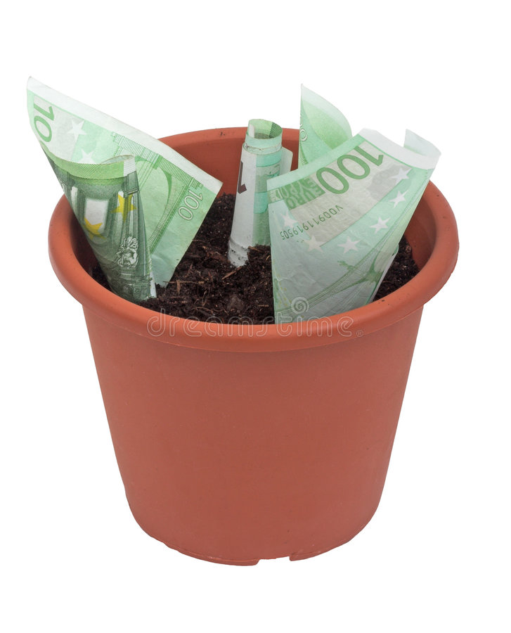 Download Money plant stock image. Image of plant, business, money - 464069