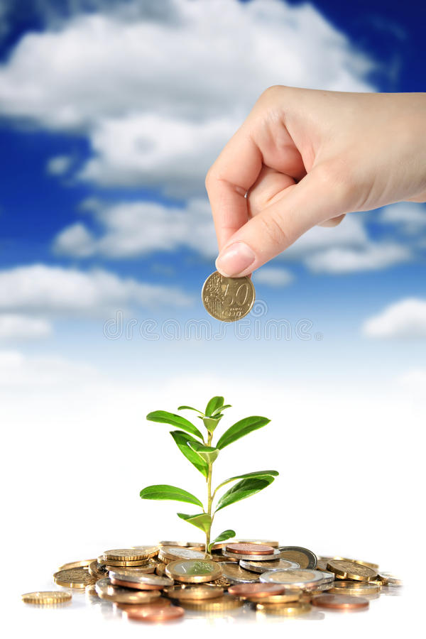 Money and plant. stock photography