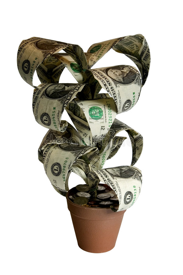 Money Plant with clipping path. Origami Money Plant with clipping path royalty free stock images