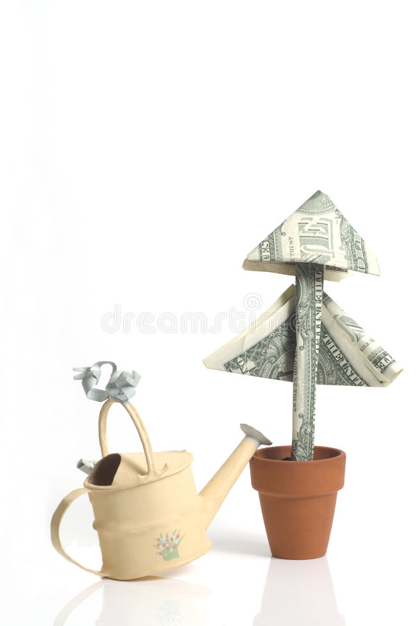 Download Money Plant And Watering Can Stock Image - Image of money, dollars: 7769655