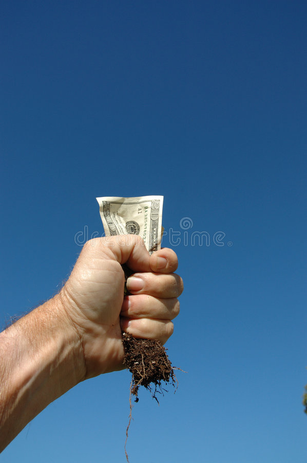 Money And Root 2 Stock Photo
