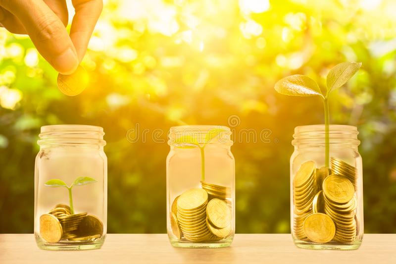 Money savings, investment, making money for future, financial wealth management concept. Hand holding coin over stacked coins in. Glass jar and growing plant royalty free stock images