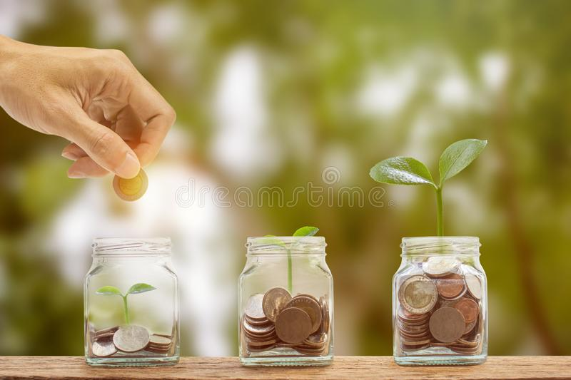 Money savings, investment, making money for future, financial wealth management concept. A man hand holding coin over stacked. Coins in glass jar and growing royalty free stock photos