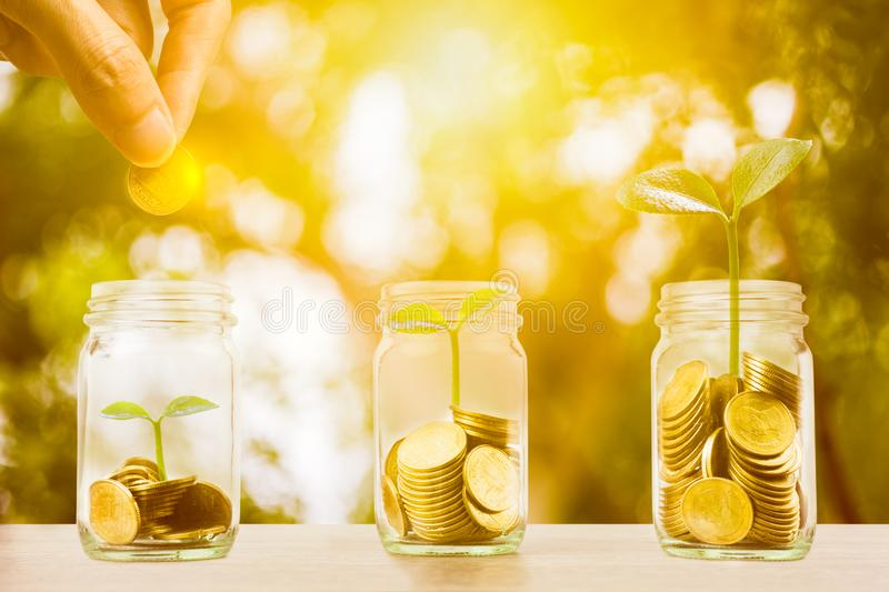Money savings, investment, making money for future, financial wealth management concept. Hand holding coin over stacked coins in. Glass jar and growing plant stock image