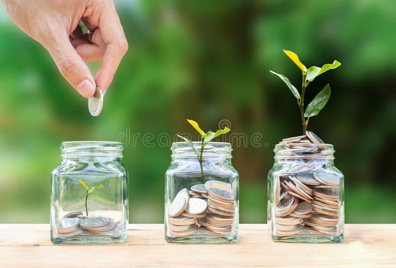 Money savings, investment, making money for future, financial wealth management concept stock photography