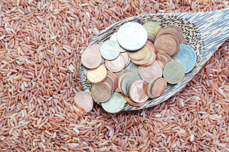 Money on spoon and red rice stock photos
