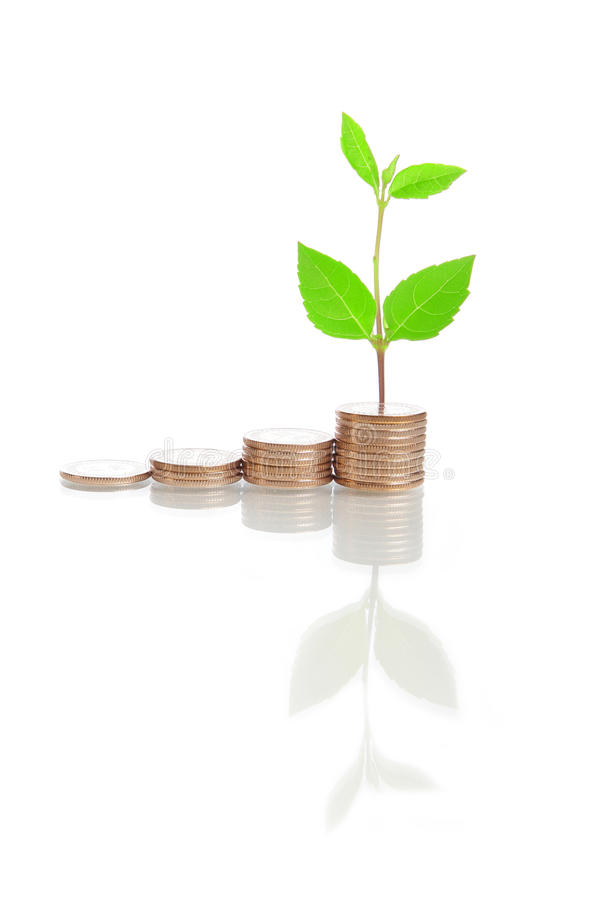 Money stairs and green plant stock images