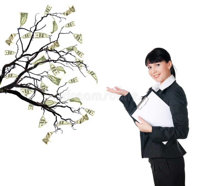 Money Tree. As a symbol of business success stock images