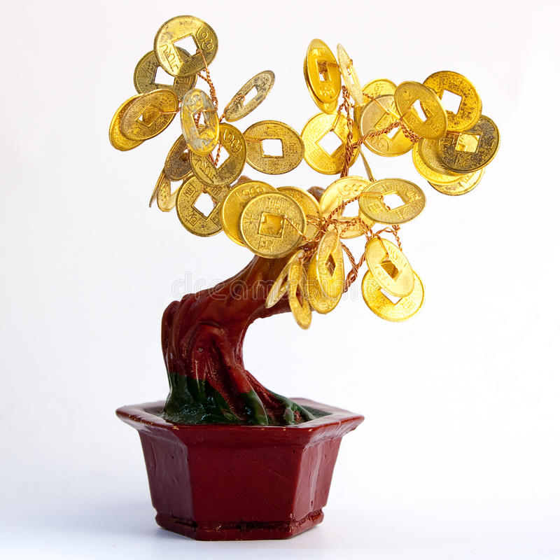 Money tree. Chinees money tree - symbol of prosperity and success royalty free stock photos