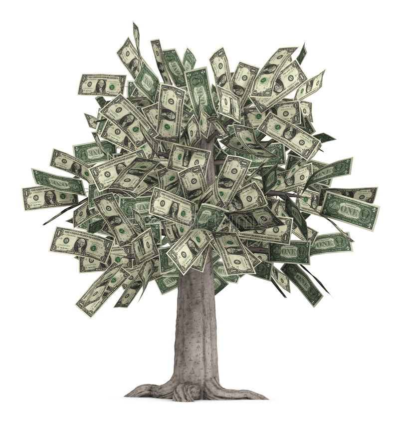 Free Money Tree Stock Photo - 2082610