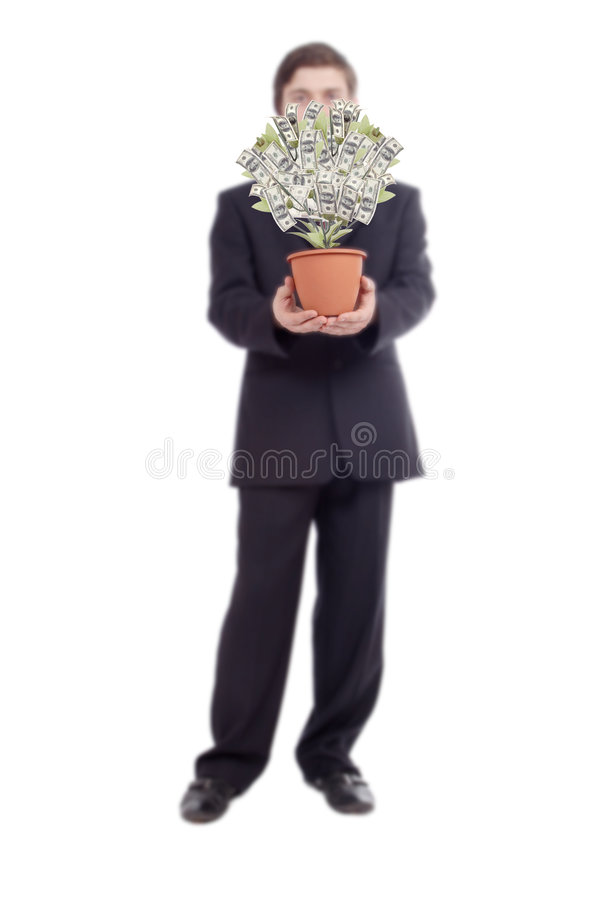 Money tree. With businessman. Isolated on white royalty free stock photography