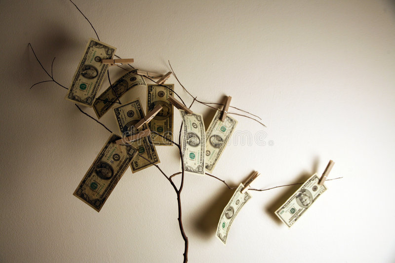 Money on a tree branch. Money growing on a tree branch stock images
