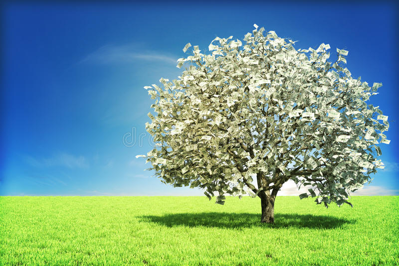 Money tree concept. With room for text , or copy space stock photo