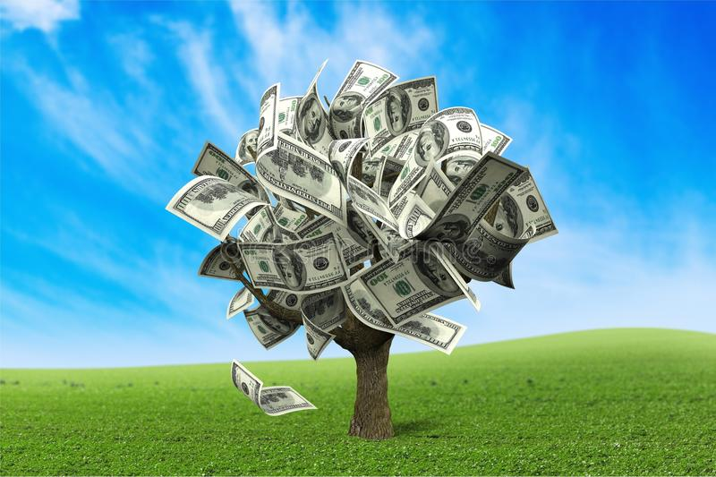 Money Tree. Currency Growth Savings Tree Finance Investment stock images