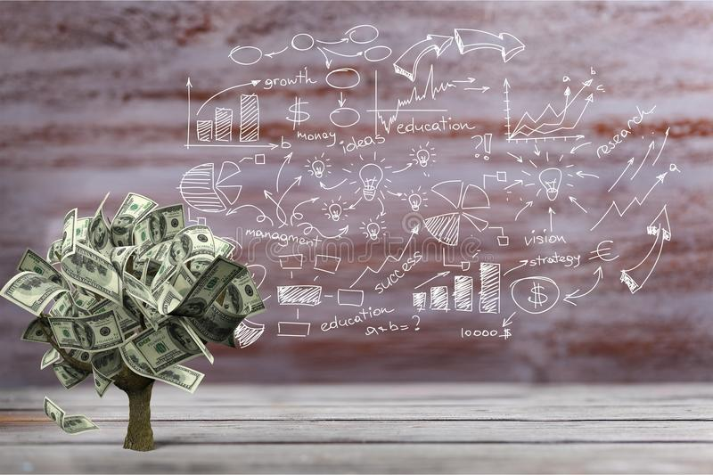 Money Tree. Currency Growth Savings Tree Finance Investment royalty free stock photo