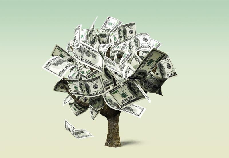 Money tree royalty free illustration