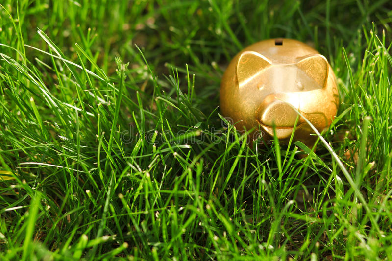 Moneybox On The Grass Stock Images