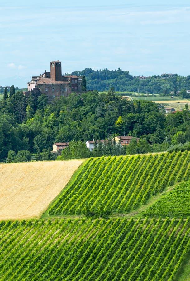 Monferrato (Italia) fotografia stock