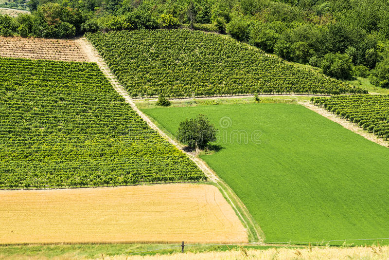 Download Monferrato (Italy) Royalty Free Stock Images - Image: 34368669