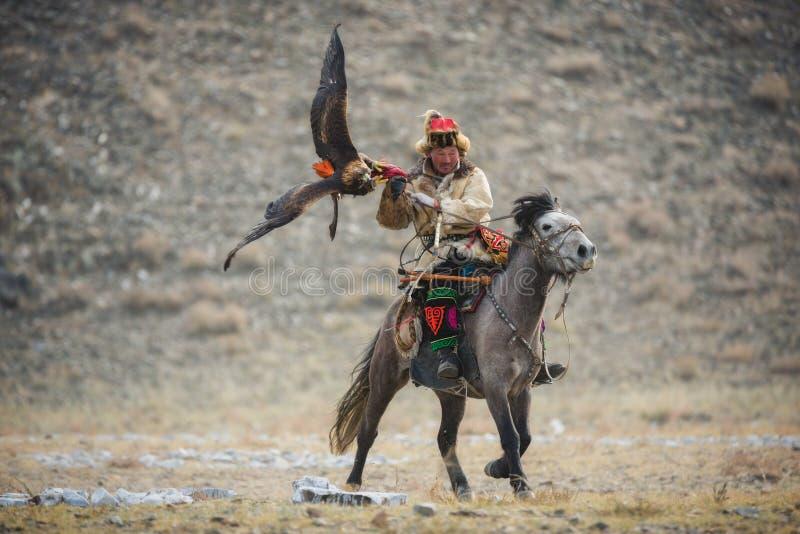 Mongólia, Eagle Festival dourado Hunter On Gray Horse With Eagle dourado magnífico, espalhando suas asas e guardando sua rapina imagem de stock royalty free