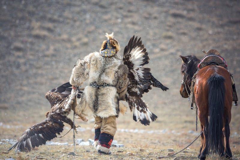 Mongólia ocidental, Eagle Festival dourado O nômada do Mongolian carrega dois Golden Eagles em suas mãos após a competição do ` d imagem de stock