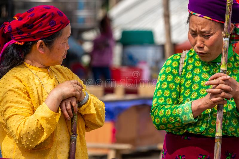 Mong ethnic minority women. Van, Vietnam - March 18, 2018: Mong ethnic minority women with colorful dresses at Van sunday market royalty free stock image