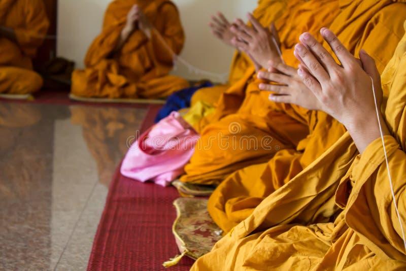 A monge budista chanting no templo fotos de stock royalty free