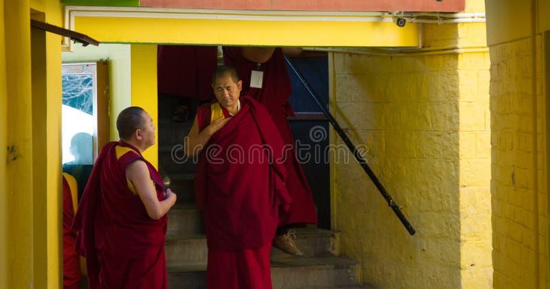 A monge budista guarda a posição alta na residência de Dalai Lama imagem de stock royalty free