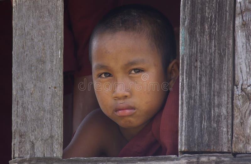 Monge budista nova em Myanmar (Burma) fotografia de stock