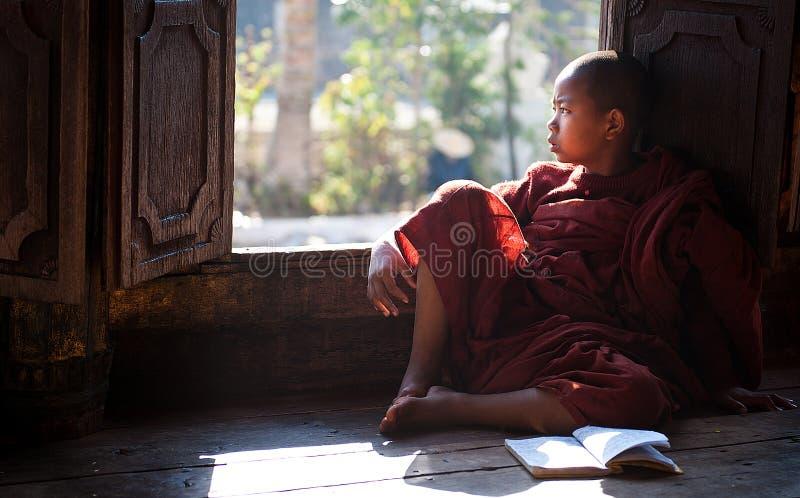 Monge nova que aprende no monastério Myanmar foto de stock royalty free