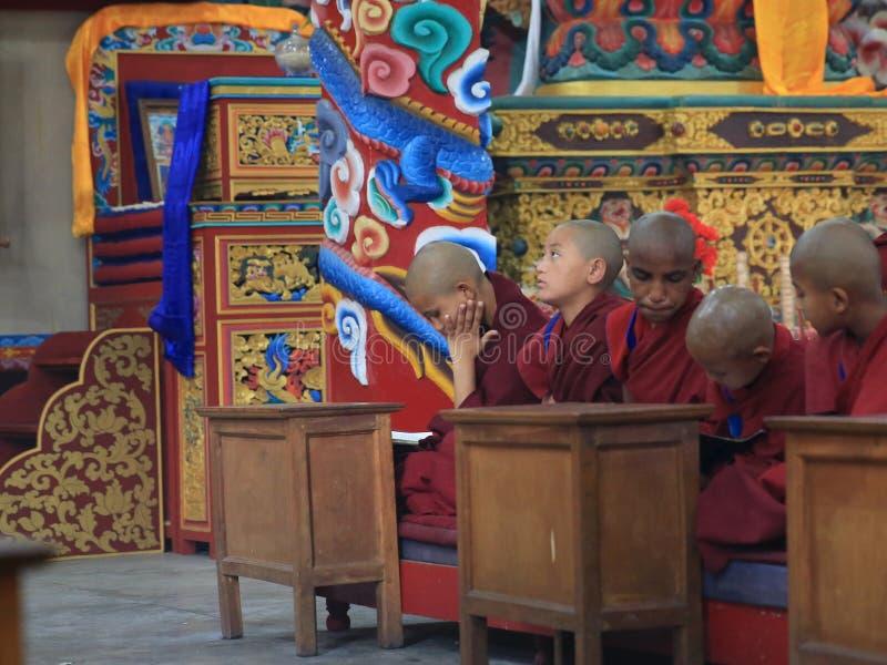 Monge tibetana na oração fotografia de stock royalty free