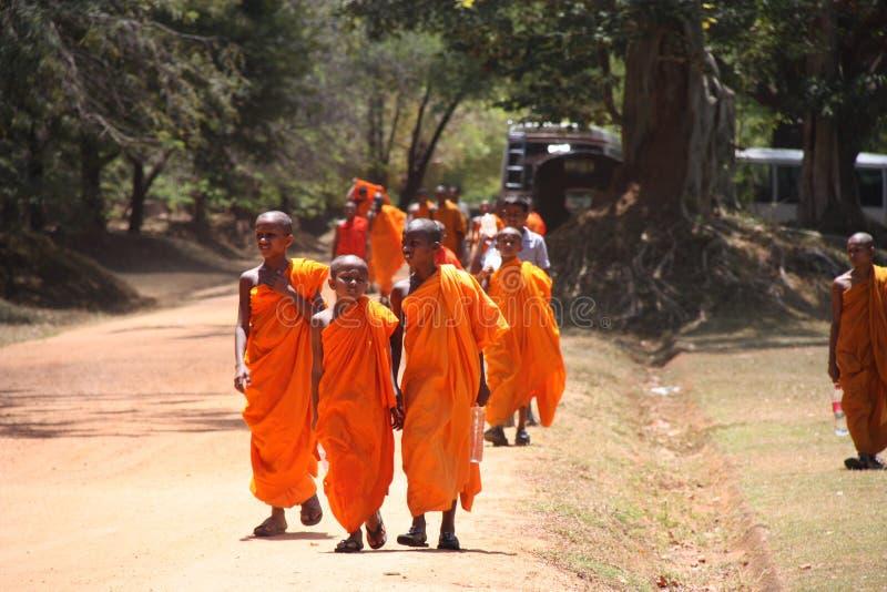 Monges de Sri Lanka imagens de stock royalty free