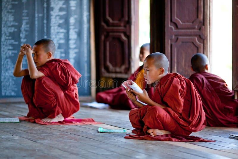 Monges do principiante, Myanmar fotografia de stock royalty free