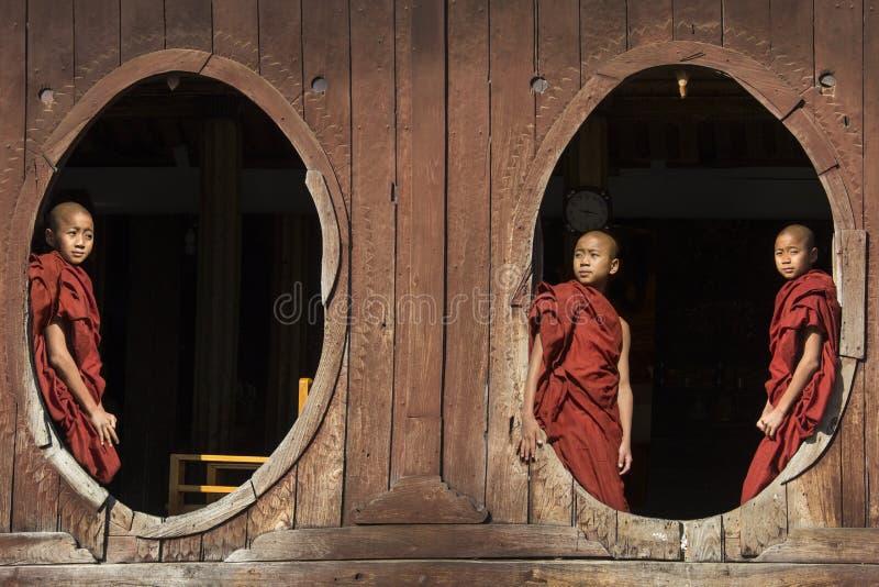 Monges do principiante - Nyaungshwe - Myanmar foto de stock royalty free