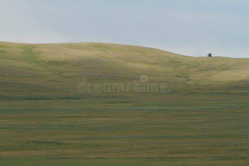Mongoła krajobraz zdjęcia stock