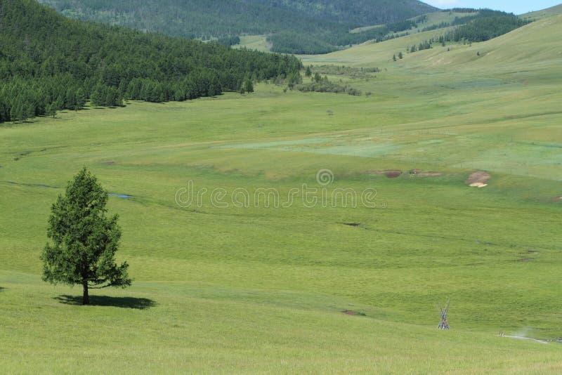 Mongoła krajobraz Tsenkher zdjęcie stock