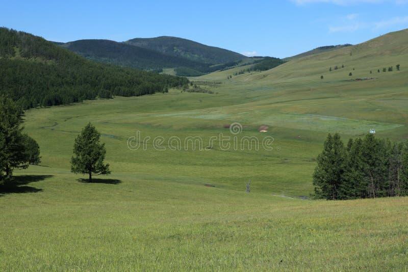 Mongoła krajobraz Tsenkher obrazy royalty free