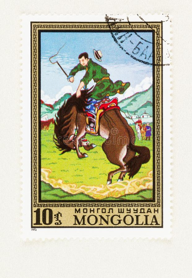 Mongol Man breaking a Horse royalty free stock images