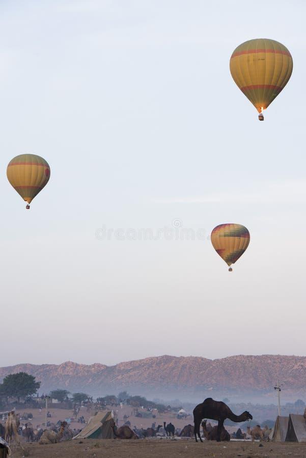 Mongolfiere in aria alla terra giusta del cammello di Pushkar, Pushkar, Ajmer, immagine stock