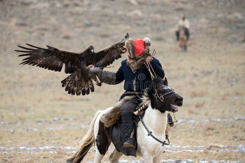 mongolië Traditioneel Gouden Eagle Festival Onbekend Mongools Hunter Berkutchi On Horse With Gouden Eagle Valkerij in het Westen  royalty-vrije stock afbeelding