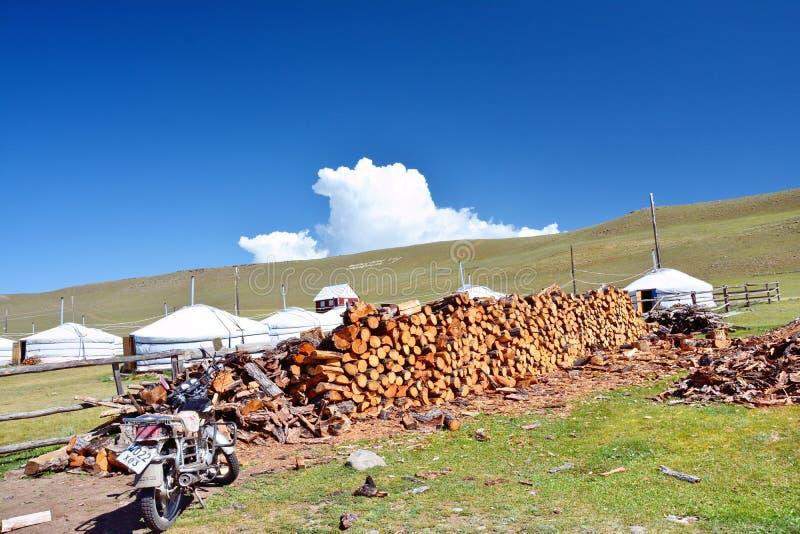 mongolia Bois empilé près de l'entrée au camp près du lac Hovsgol près du village du plan rapproché de khankh photo stock